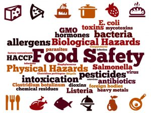 HACCP and Food Safety Training