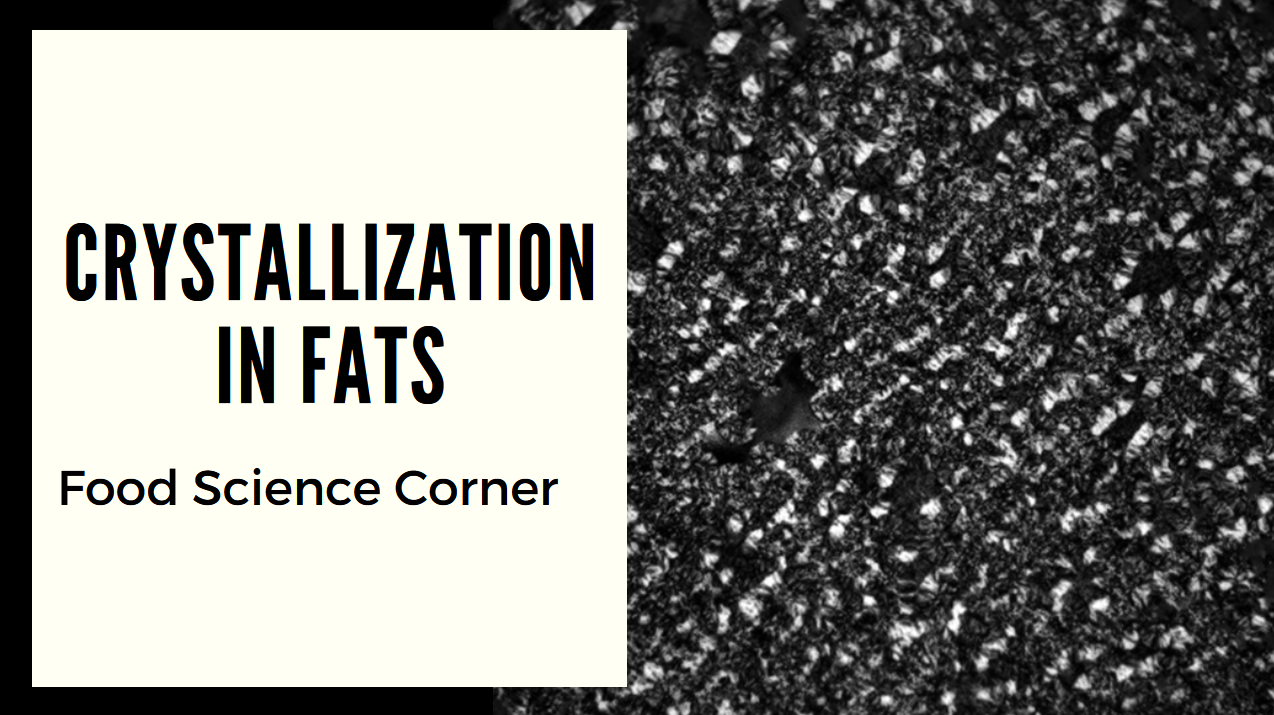 Food Science Corner: Fat Crystallization