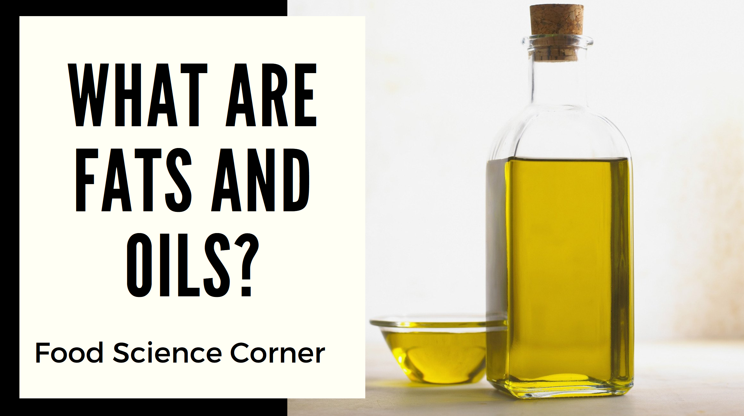 Food Science Corner: What are Fats and Oils?
